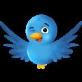 Hola soy Twitter, ¿te acuerdas de quien era Tweetie? Soy primo suyo ;)